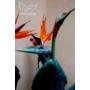 Kép 3/4 - pompás papagályvirág virága